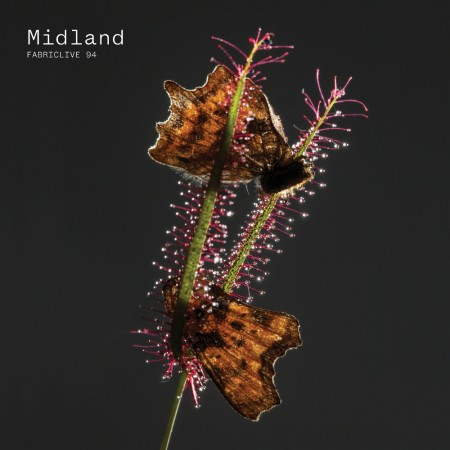 midland-fabriclive